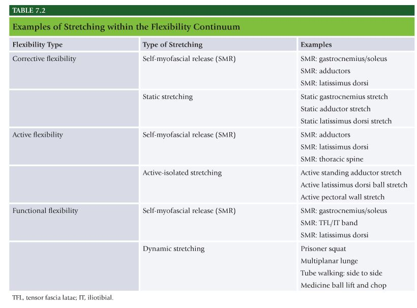 Nasm Chapter 7 Flexibility Training Concepts