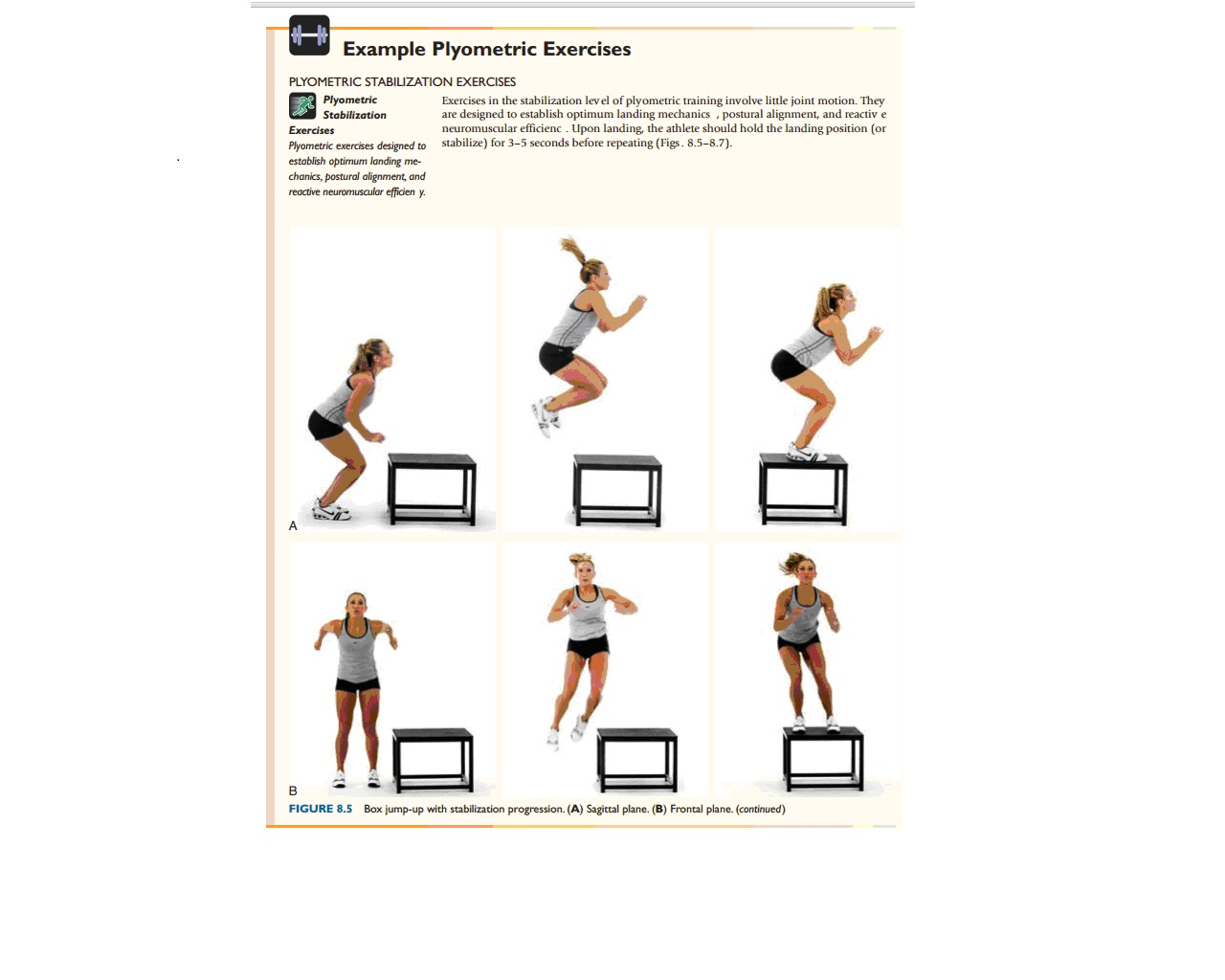 NASM Chapter 11 Plyometric (Reactive) Training Concepts